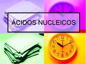 CIDOS NUCLEICOS cidos Nucleicos n Formados por subunidades