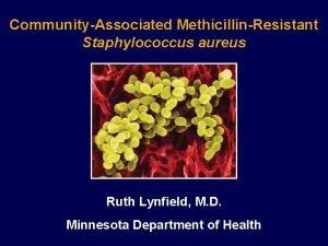 CommunityAssociated MethicillinResistant Staphylococcus aureus Ruth Lynfield M D