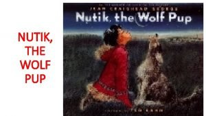 NUTIK THE WOLF PUP NUTIK THE WOLF PUP