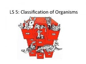 LS 5 Classification of Organisms Classification o the