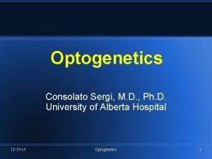 Optogenetics Consolato Sergi M D Ph D University