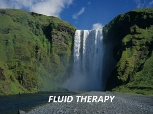 FLUID THERAPY Body Fluid Compartments 23 X 5070