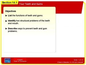 Section 14 1 Your Teeth and Gums Objectives