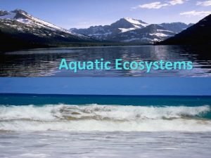 Aquatic Ecosystems Section 1 Freshwater Ecosystems Objectives Describe
