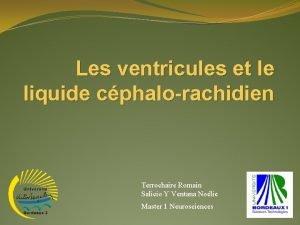 Les ventricules et le liquide cphalorachidien Terrochaire Romain