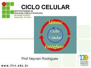 CICLO CELULAR Prof Neyvan Rodrigues CICLO CELULAR l