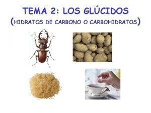 TEMA 2 LOS GLCIDOS HIDRATOS DE CARBONO O