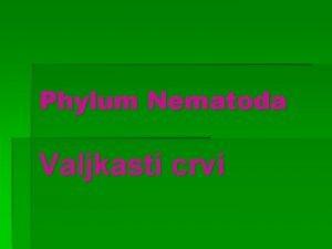 Phylum Nematoda Valjkasti crvi Opte karakteristike Pseudocelom prvi