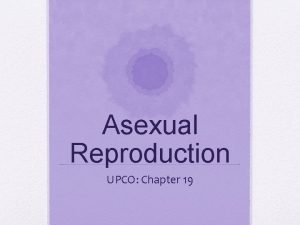 Asexual Reproduction UPCO Chapter 19 Asexual Reproduction Results