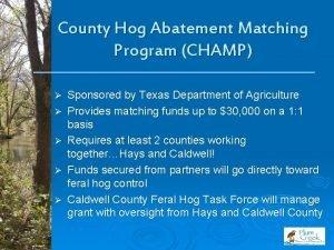 County Hog Abatement Matching Program CHAMP Sponsored by