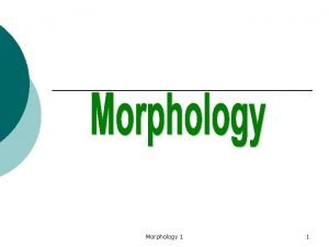 Morphology 1 1 Morphology is the field within