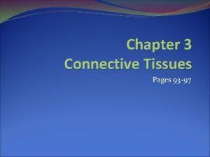 Chapter 3 Connective Tissues Pages 93 97 Connective