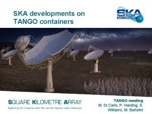 SKA developments on TANGO containers TANGO meeting M