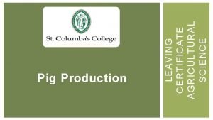 LEAVING CERTIFICATE AGRICULTURAL SCIENCE Pig Production LEARNING OUTCOMES