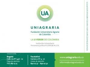 ORGANIZACIONES CONVOCATORIA FORTALECIMIENTO IDEAS EMPRENDIMIENTO E INNOVACIN Presentado