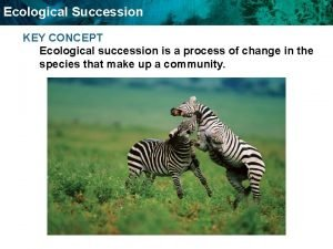 Ecological Succession KEY CONCEPT Ecological succession is a