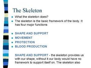 The Skeleton n n n What the skeleton