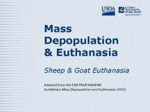 Mass Depopulation Euthanasia Sheep Goat Euthanasia Adapted from