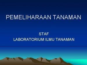 PEMELIHARAAN TANAMAN STAF LABORATORIUM ILMU TANAMAN Secara umum