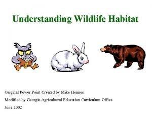 Understanding Wildlife Habitat Original Power Point Created by