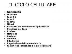IL CICLO CELLULARE Generalit Interfase Fase G 1