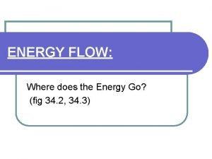 ENERGY FLOW Where does the Energy Go fig