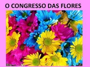 O CONGRESSO DAS FLORES ANIMADOR As flores da