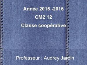 Anne 2015 2016 CM 2 12 Classe cooprative