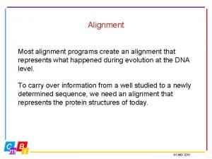 Alignment Most alignment programs create an alignment that