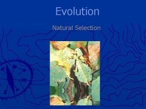 Evolution Natural Selection Theory What is a theory