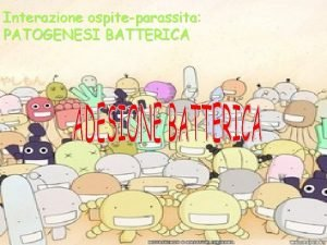 Interazione ospiteparassita PATOGENESI BATTERICA ESPOSIZIONE Principali fasi del