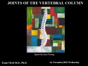 JOINTS OF THE VERTEBRAL COLUMN Spine by Sara