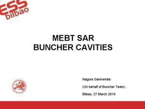 MEBT SAR BUNCHER CAVITIES Nagore Garmendia On behalf