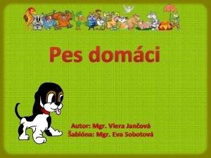 Pes domci Autor Mgr Viera Janov ablna Mgr