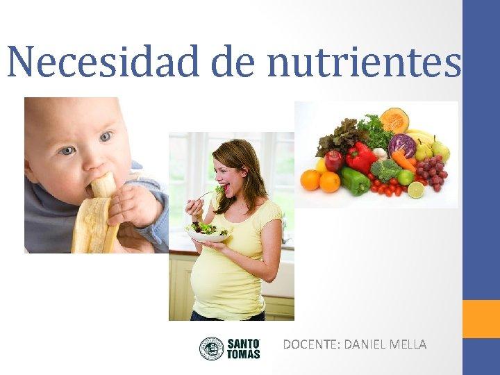 Necesidad de nutrientes DOCENTE DANIEL MELLA Necesidad de