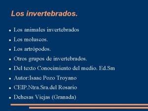 Los invertebrados Los animales invertebrados Los moluscos Los
