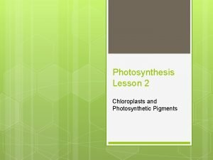 Photosynthesis Lesson 2 Chloroplasts and Photosynthetic Pigments Learning