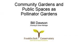 Community Gardens and Public Spaces as Pollinator Gardens