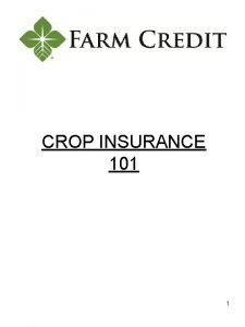 CROP INSURANCE 101 1 Common Crop Insurance Policy