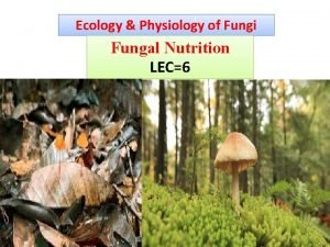 Ecology Physiology of Fungi Fungal Nutrition LEC6 Fungal