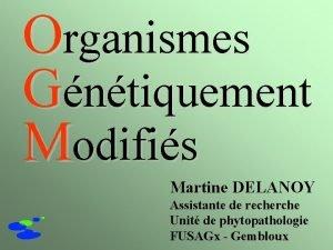 Organismes Gntiquement Modifis Martine DELANOY Assistante de recherche