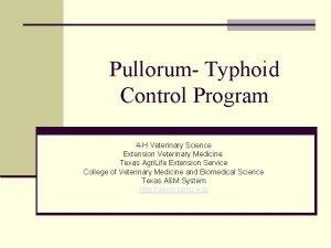 Pullorum Typhoid Control Program 4 H Veterinary Science