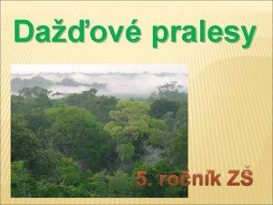 Daov pralesy 5 ronk Z Daov pralesy pca