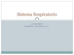 Sistema Respiratorio ANATOMA GABRIEL MANSILLA L Generalidades Es