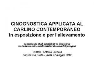 CINOGNOSTICA APPLICATA AL CARLINO CONTEMPORANEO in esposizione e