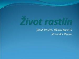 ivot rastln Jakub Perdek Michal Borutk Alexander Pavlov