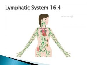 Lymphatic System 16 4 Functions of the Lymphatic