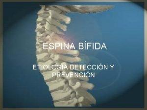 ESPINA BFIDA ETIOLOGA DETECCIN Y PREVENCIN DEFINICIN La