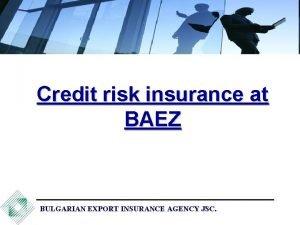 Credit risk insurance at BAEZ BULGARIAN EXPORT INSURANCE