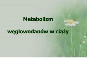Metabolizm wglowodanw w ciy Zmiany metaboliczne w organizmie